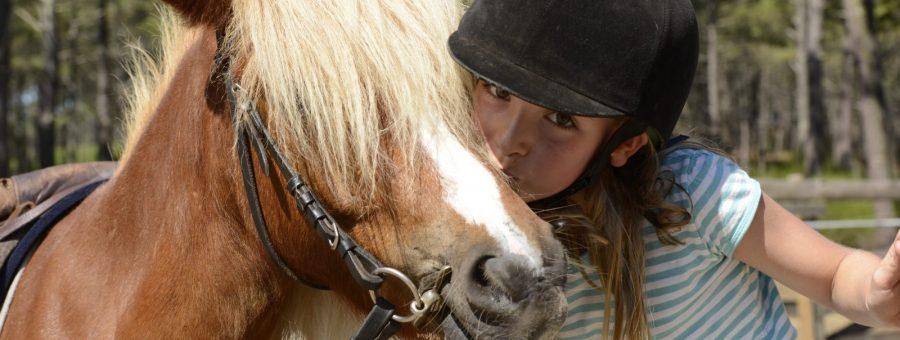 3 poney