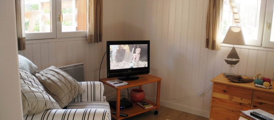 FV 3305 salon tv